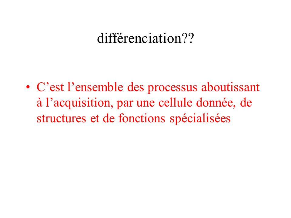 différenciation .