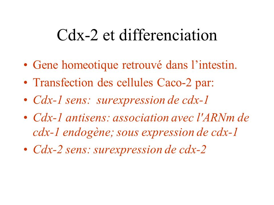 Cdx-2 et differenciation