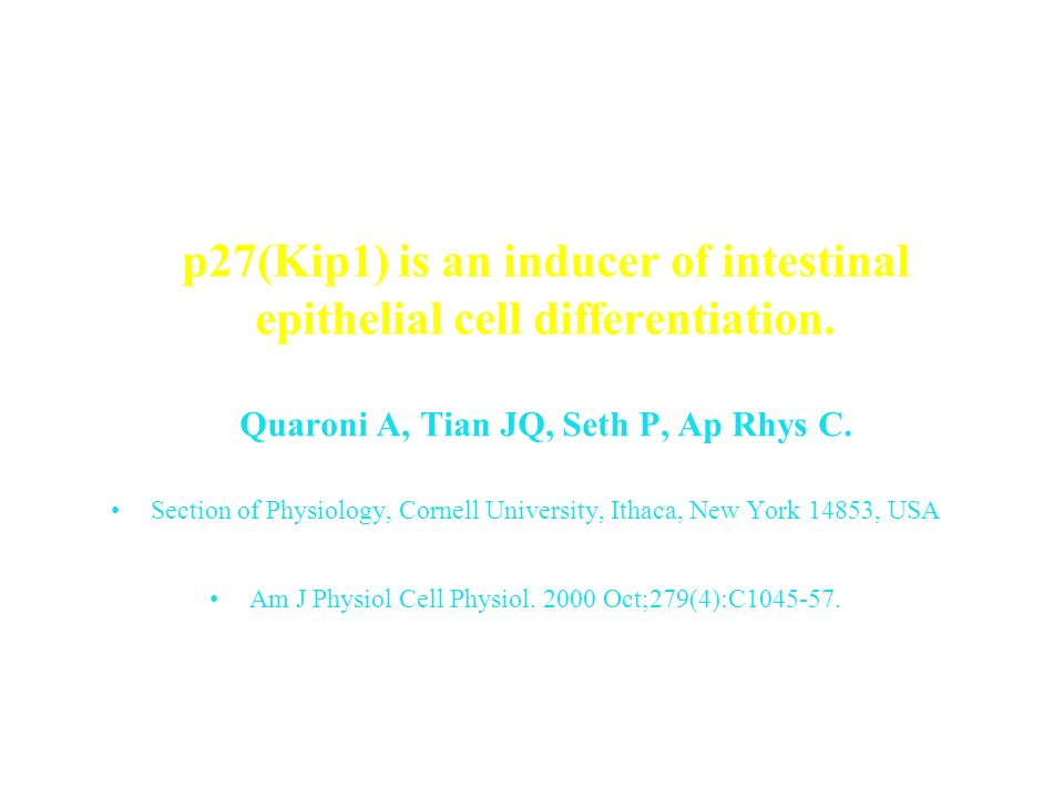 p27(Kip1) is an inducer of intestinal epithelial cell differentiation