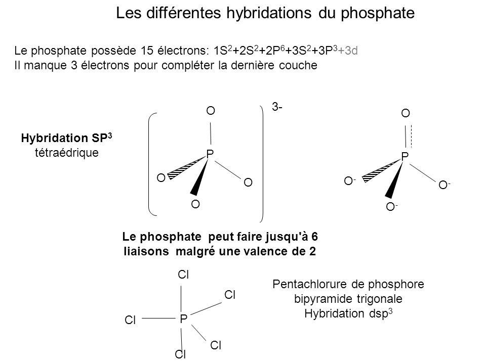 Le phosphate peut faire jusqu à 6 liaisons malgré une valence de 2