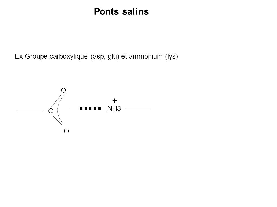 Ponts salins + - Ex Groupe carboxylique (asp, glu) et ammonium (lys) O