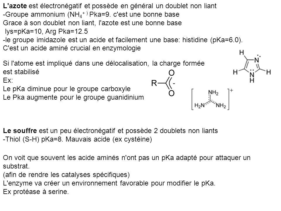 L azote est électronégatif et possède en général un doublet non liant