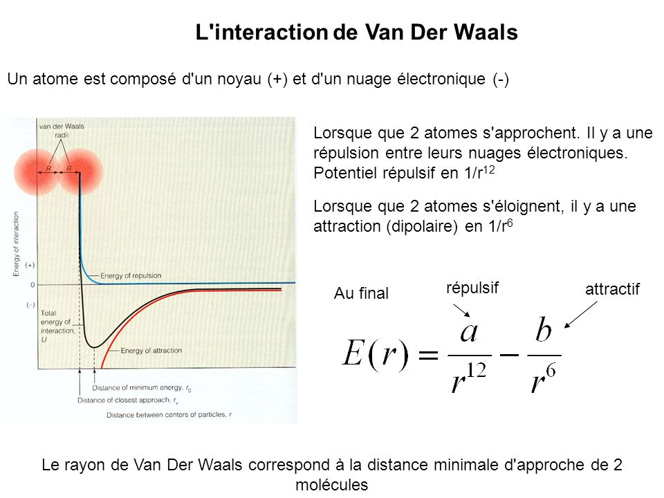 L interaction de Van Der Waals
