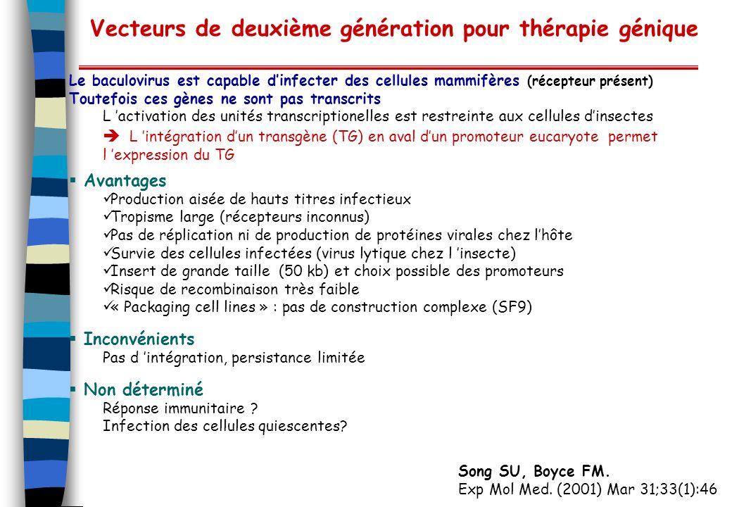 Vecteurs de deuxième génération pour thérapie génique
