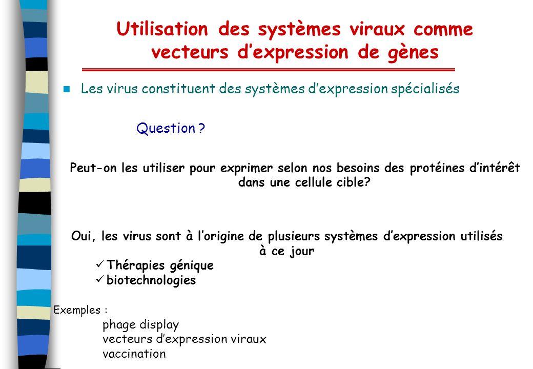 Utilisation des systèmes viraux comme vecteurs d'expression de gènes
