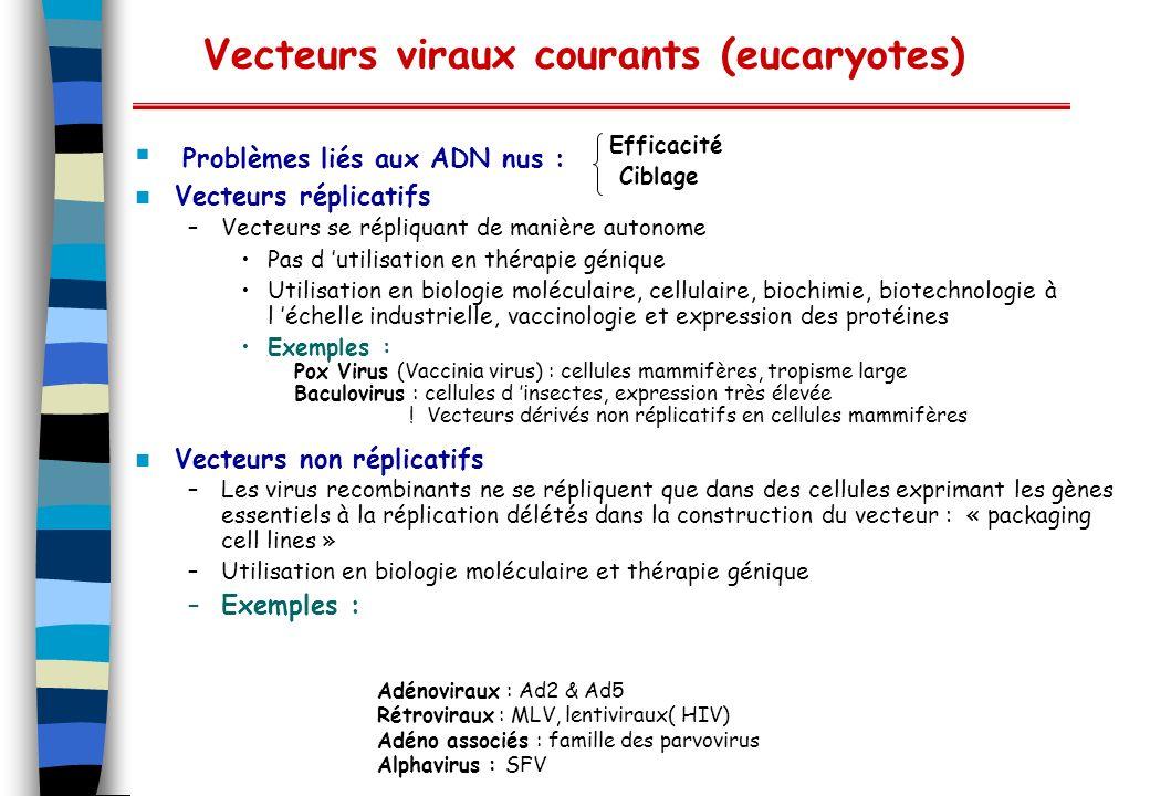 Vecteurs viraux courants (eucaryotes)