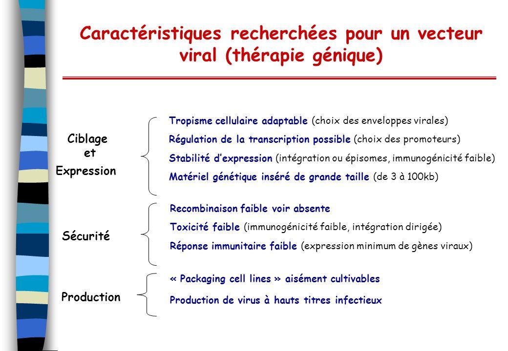 Caractéristiques recherchées pour un vecteur viral (thérapie génique)
