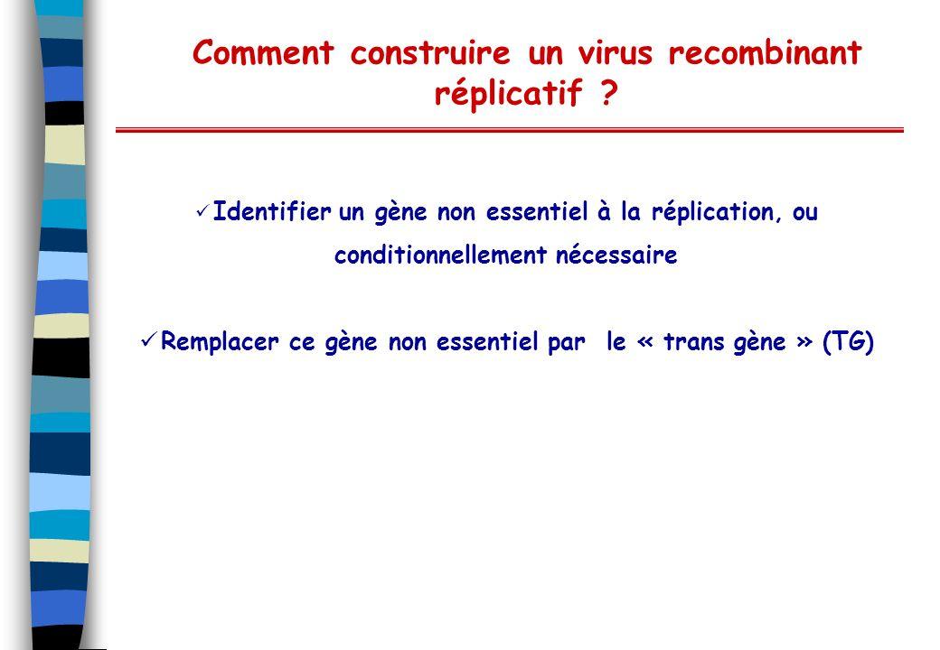 Comment construire un virus recombinant réplicatif