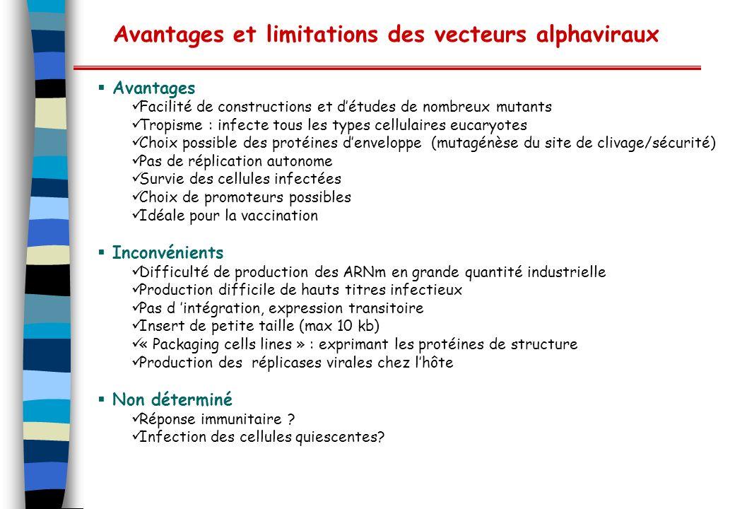 Avantages et limitations des vecteurs alphaviraux