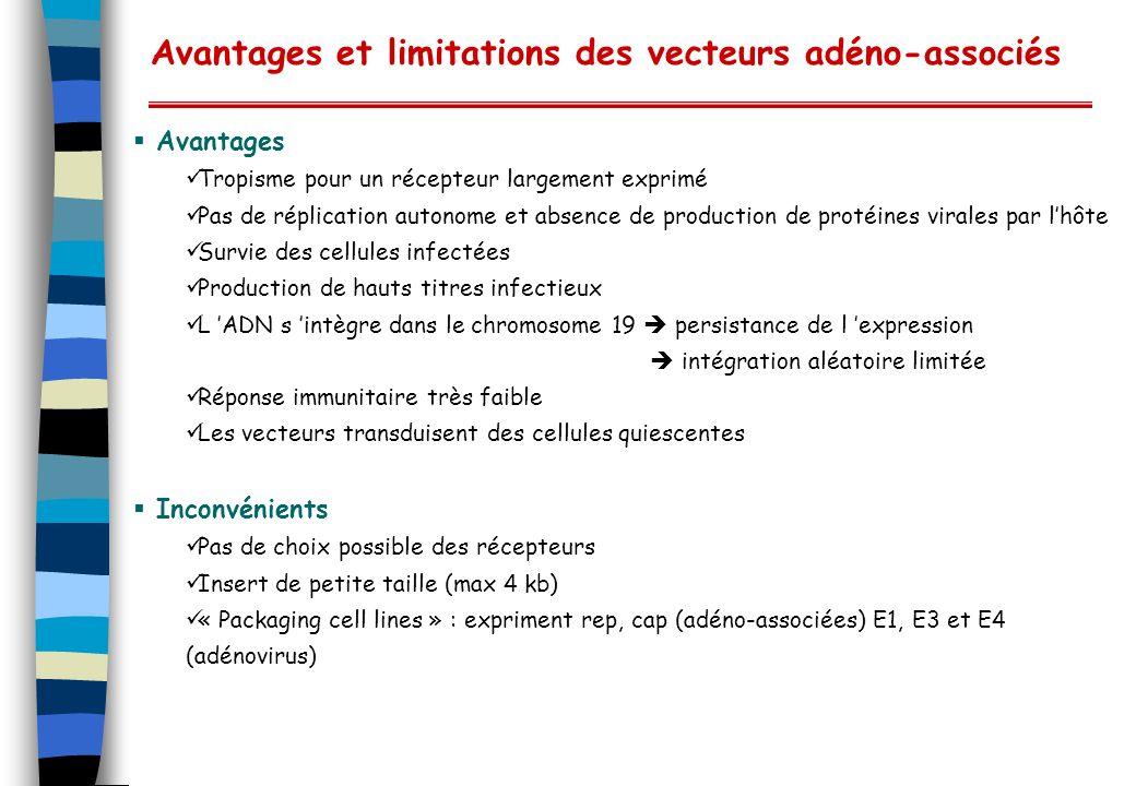 Avantages et limitations des vecteurs adéno-associés