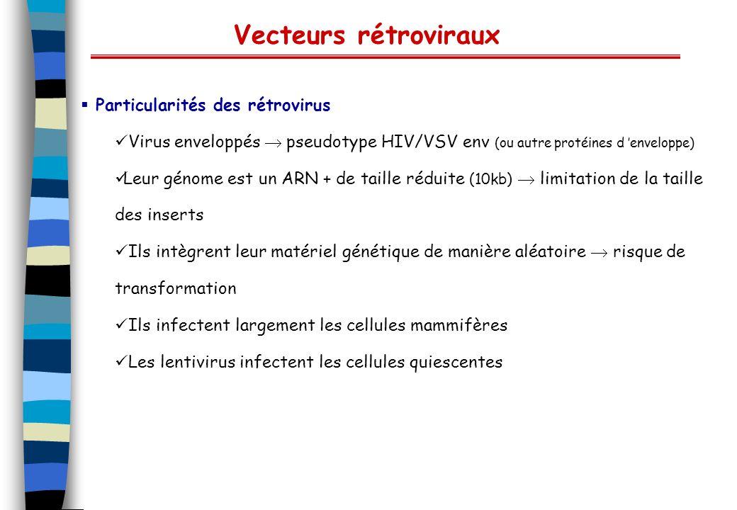 Vecteurs rétroviraux Particularités des rétrovirus