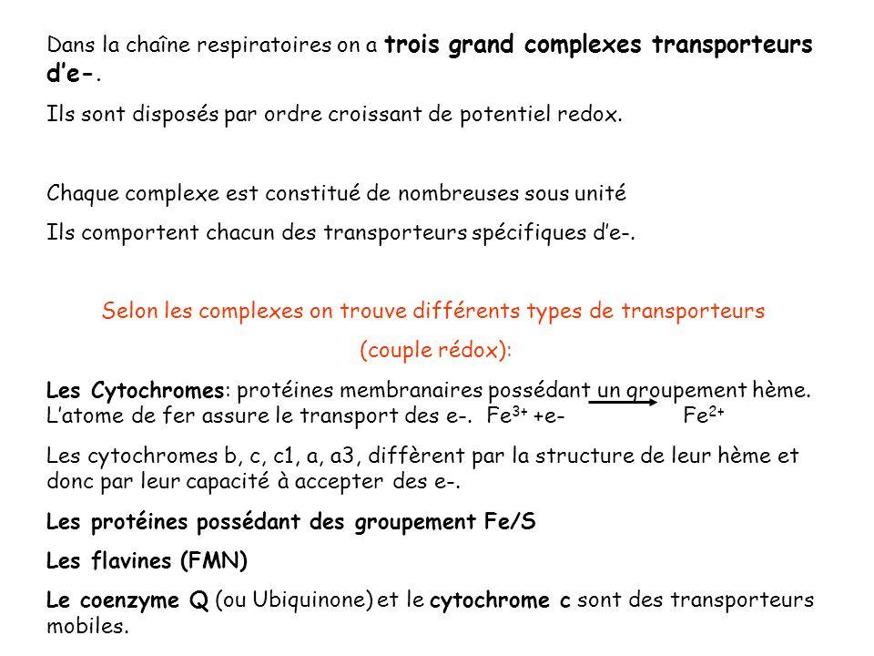 Selon les complexes on trouve différents types de transporteurs