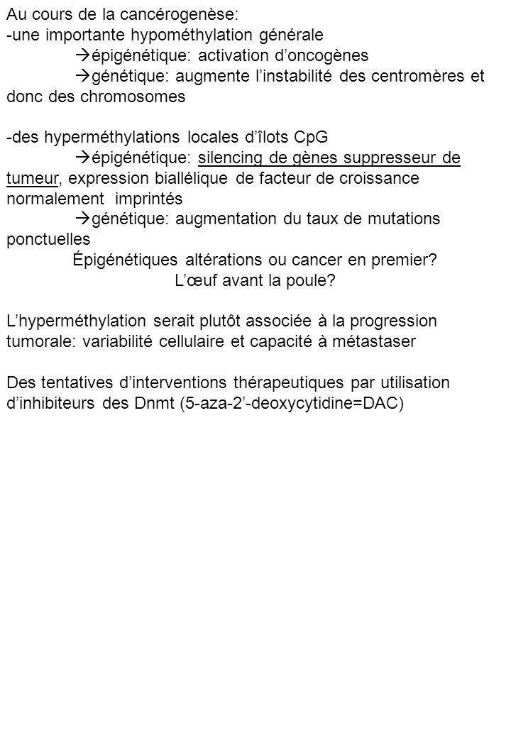 Épigénétiques altérations ou cancer en premier