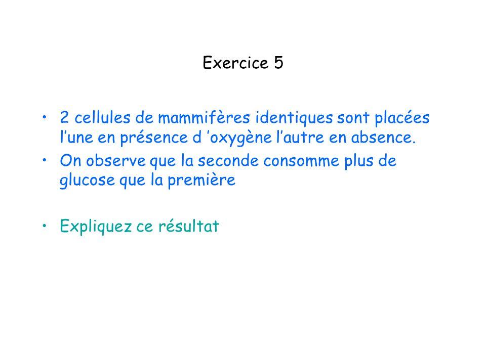 Exercice 5 2 cellules de mammifères identiques sont placées l'une en présence d 'oxygène l'autre en absence.