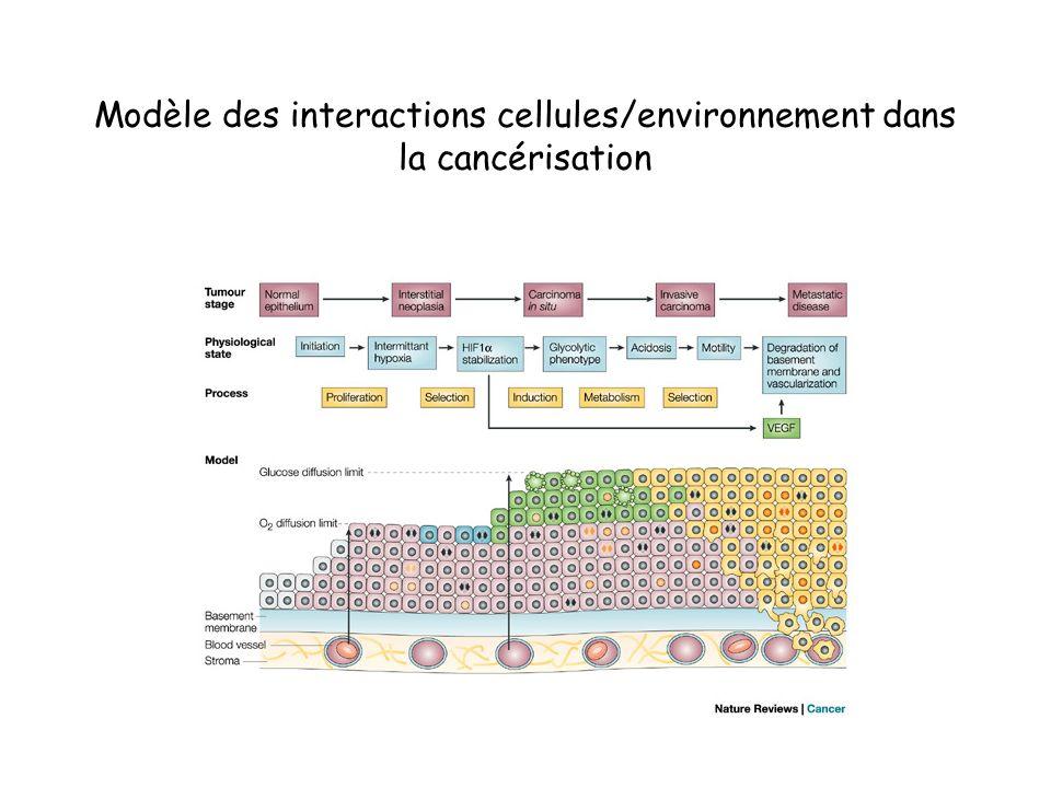 Modèle des interactions cellules/environnement dans la cancérisation