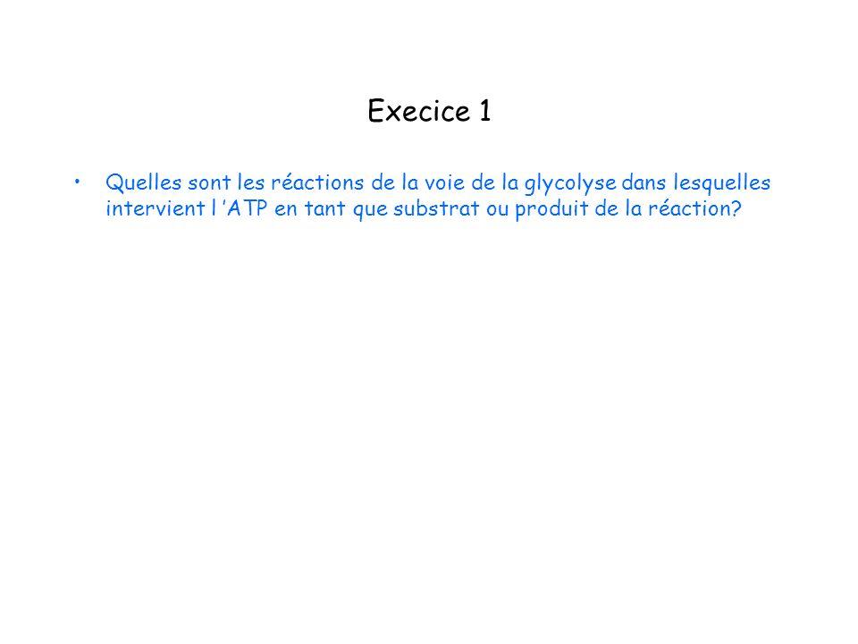 Execice 1 Quelles sont les réactions de la voie de la glycolyse dans lesquelles intervient l 'ATP en tant que substrat ou produit de la réaction