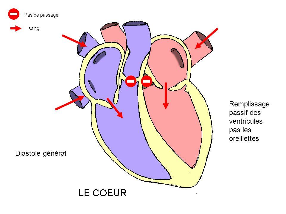 Remplissage passif des ventricules pas les oreillettes