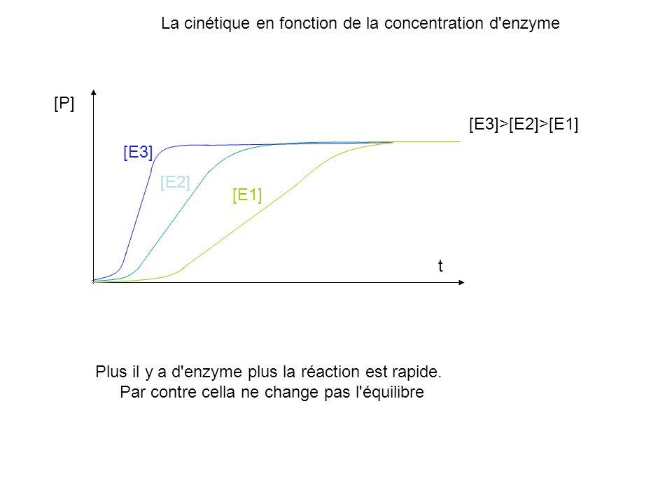 La cinétique en fonction de la concentration d enzyme