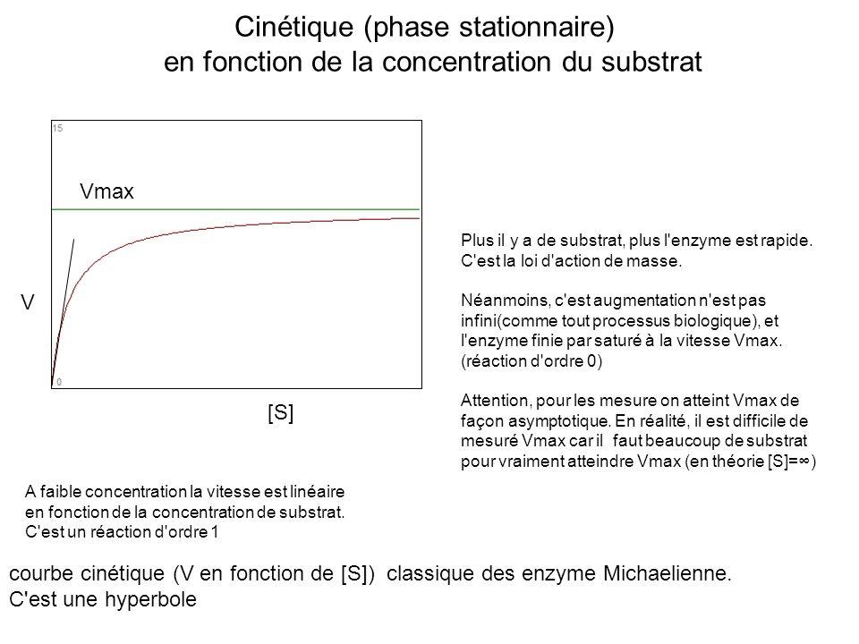 Cinétique (phase stationnaire)