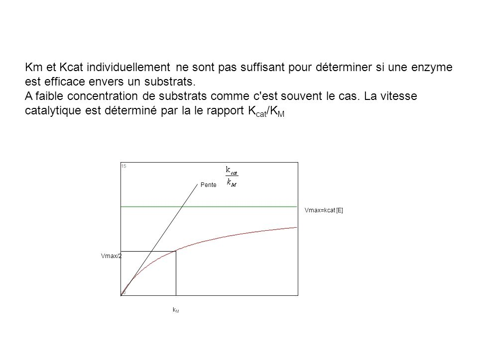 Km et Kcat individuellement ne sont pas suffisant pour déterminer si une enzyme est efficace envers un substrats.