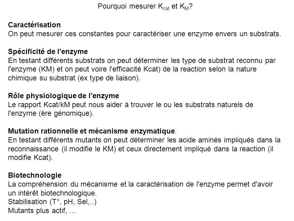 Pourquoi mesurer Kcat et KM