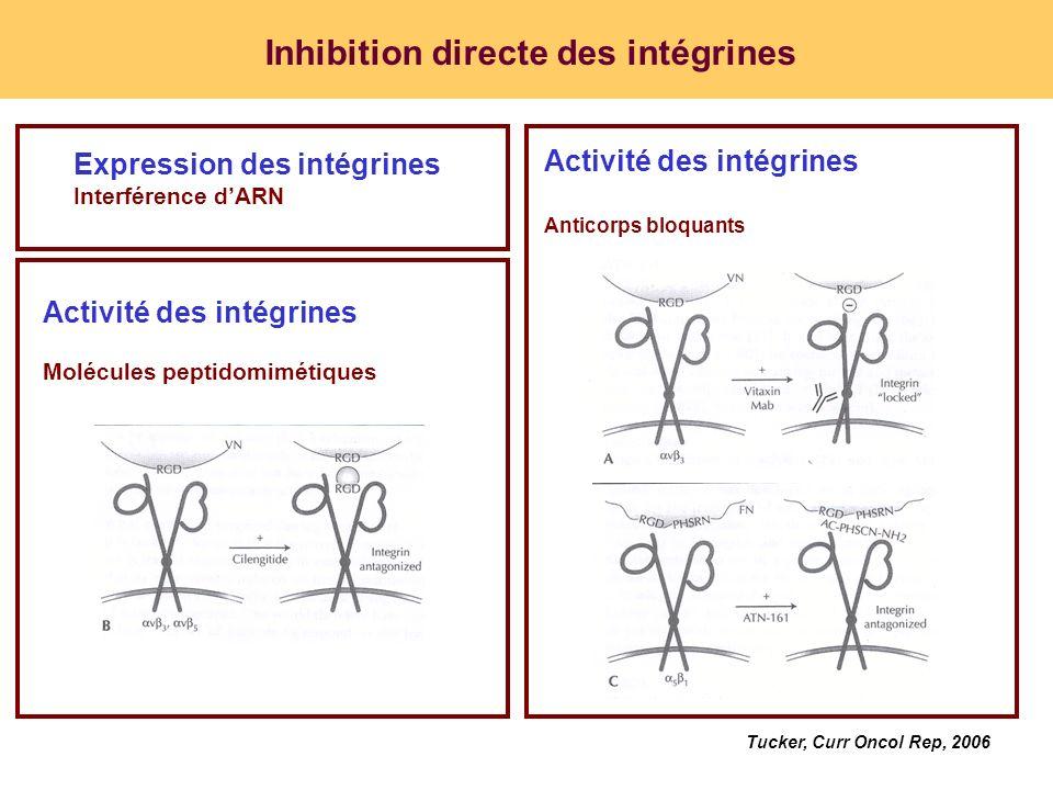 Inhibition directe des intégrines