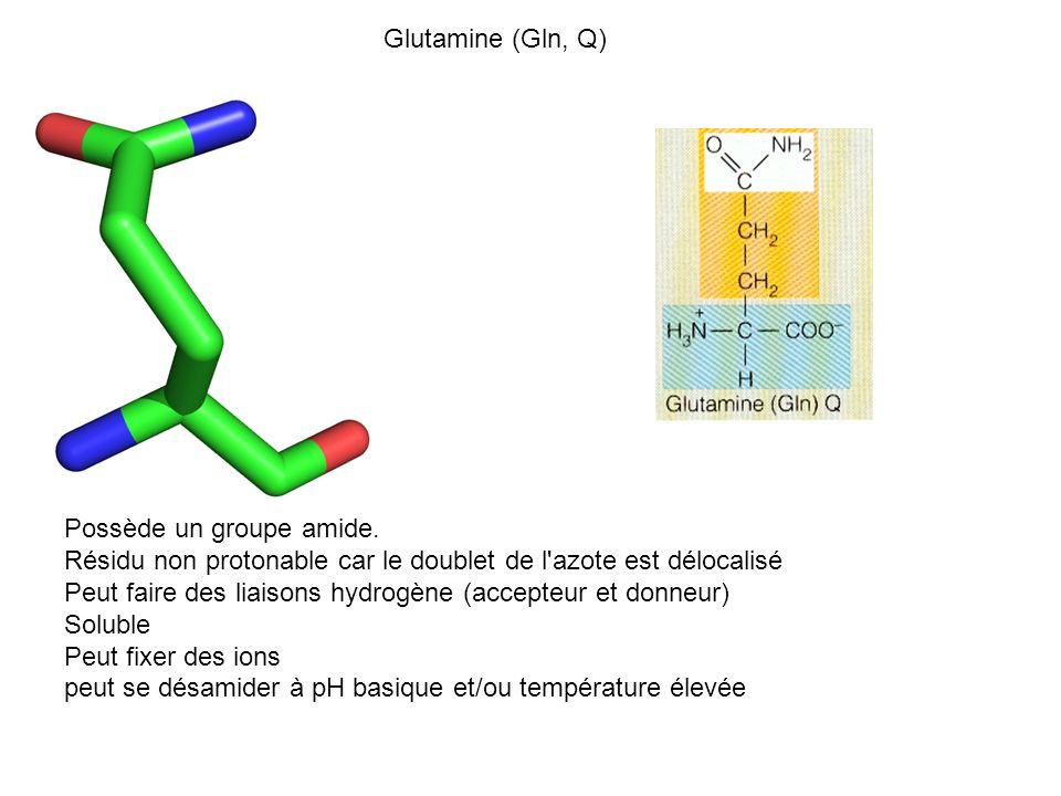Glutamine (Gln, Q) Possède un groupe amide. Résidu non protonable car le doublet de l azote est délocalisé.