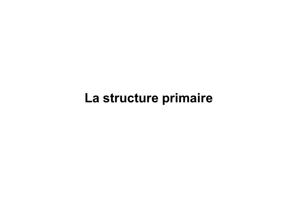 La structure primaire
