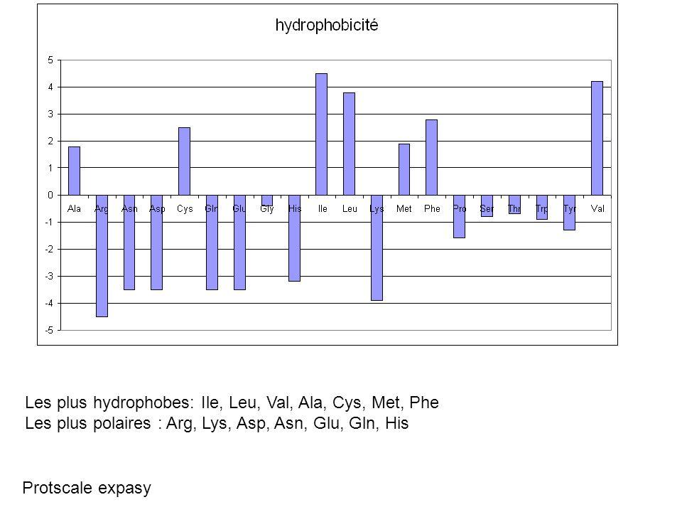 Les plus hydrophobes: Ile, Leu, Val, Ala, Cys, Met, Phe