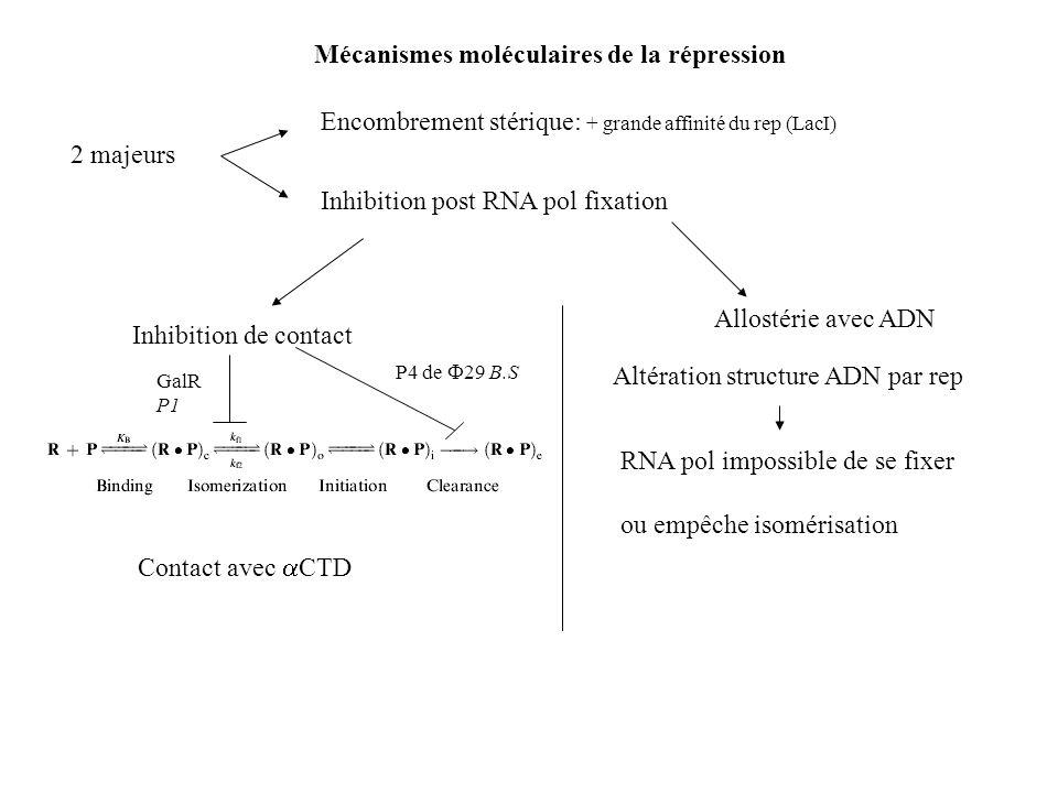 Mécanismes moléculaires de la répression