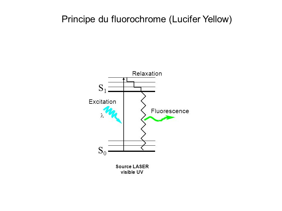 Source LASER visible UV