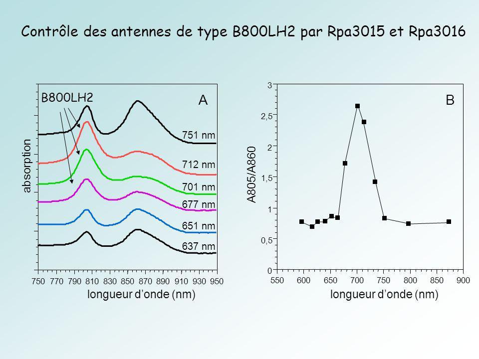 Contrôle des antennes de type B800LH2 par Rpa3015 et Rpa3016
