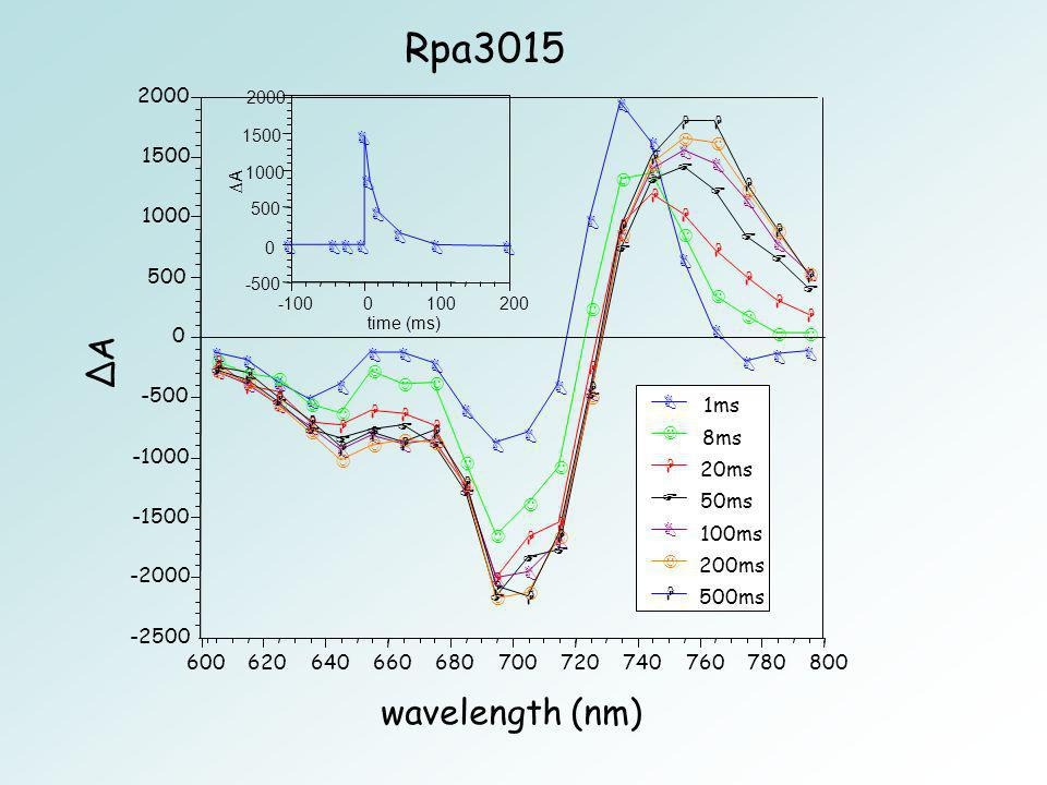 Rpa3015 ∆A wavelength (nm) ms 8ms ms