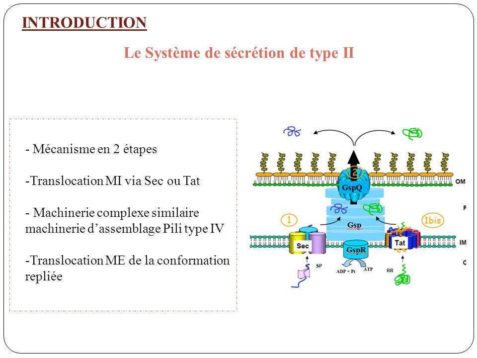 Le Système de sécrétion de type II
