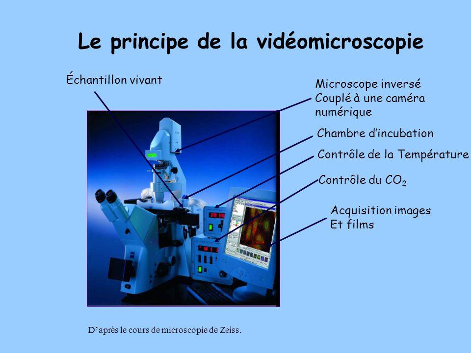 Le principe de la vidéomicroscopie
