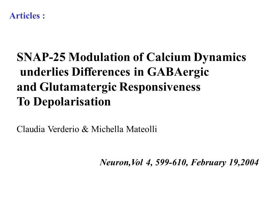 SNAP-25 Modulation of Calcium Dynamics