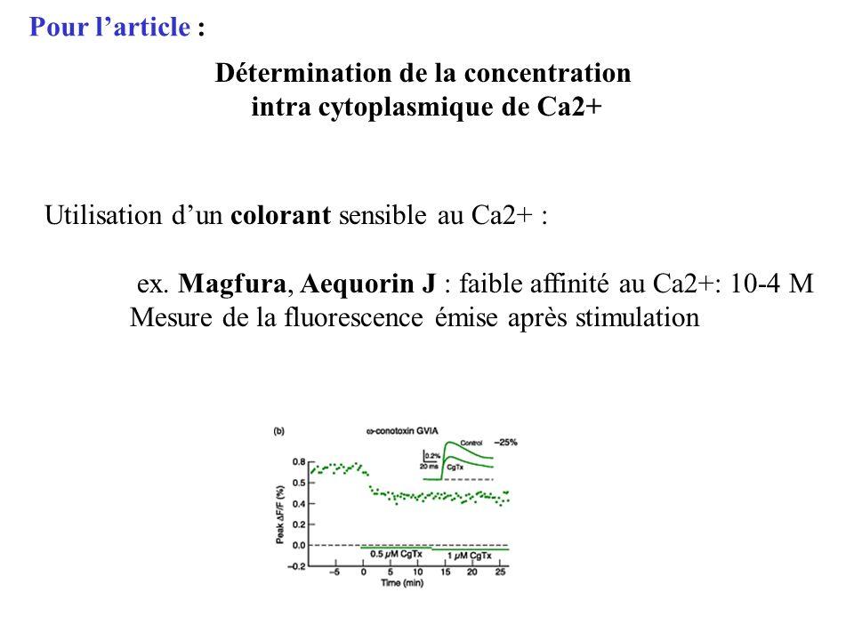 Détermination de la concentration intra cytoplasmique de Ca2+