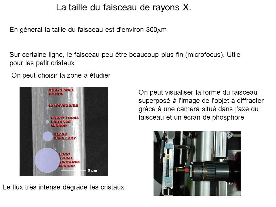 La taille du faisceau de rayons X.