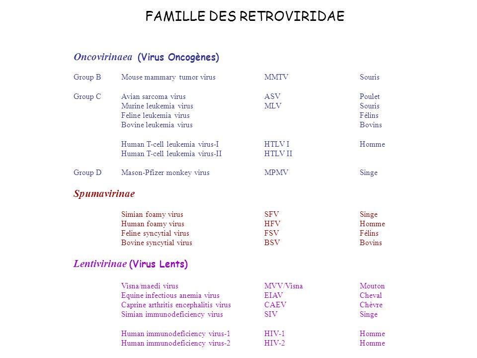 Oncovirinaea (Virus Oncogènes)