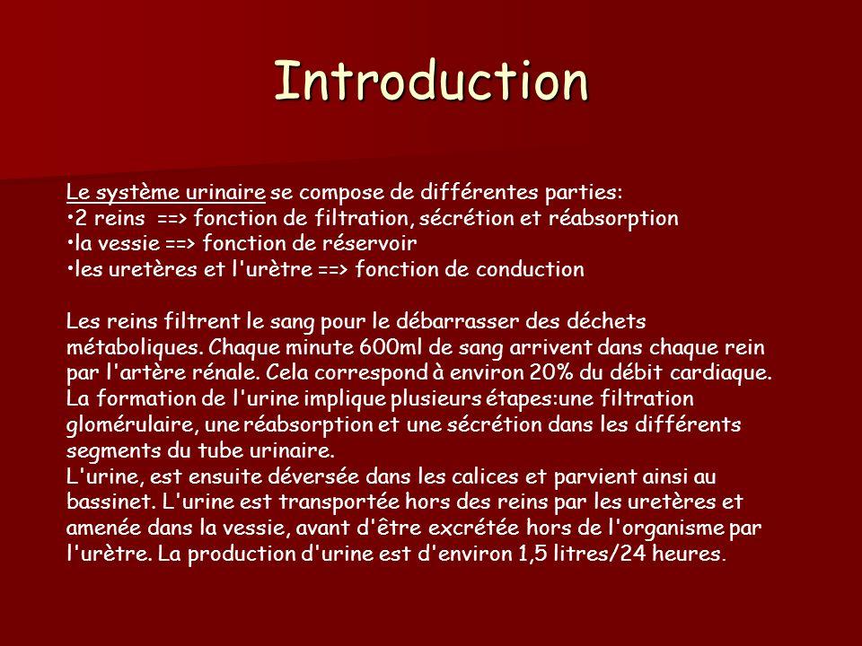 Introduction Le système urinaire se compose de différentes parties: