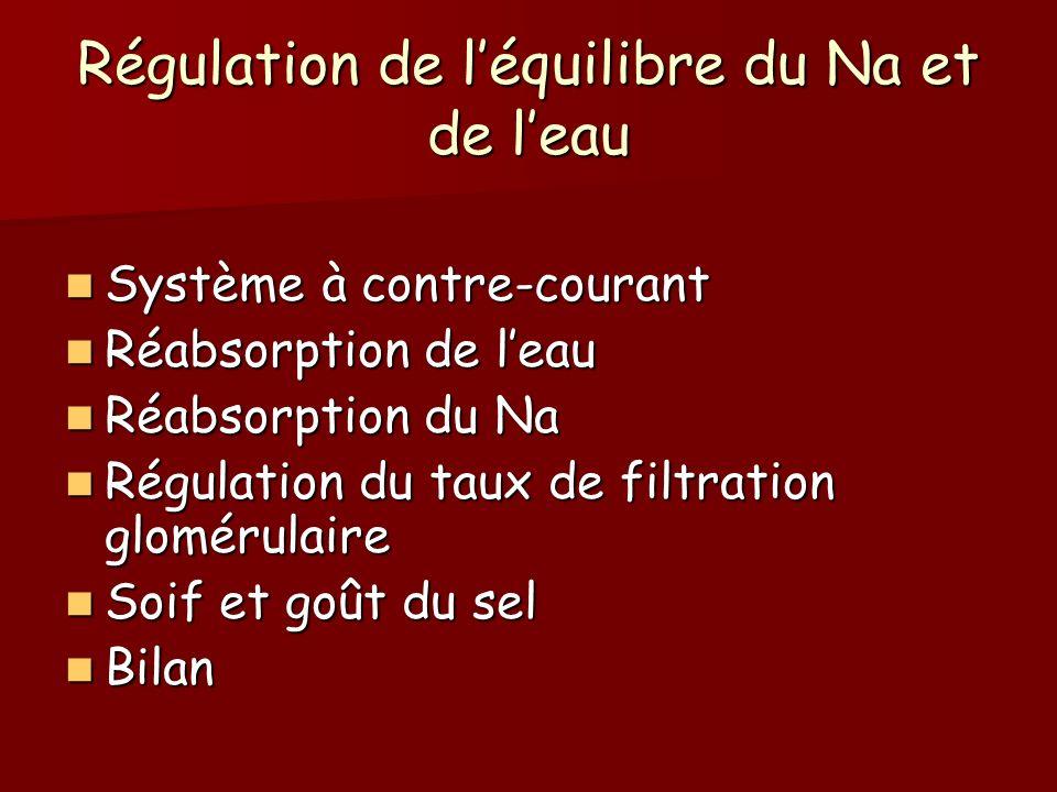 Régulation de l'équilibre du Na et de l'eau