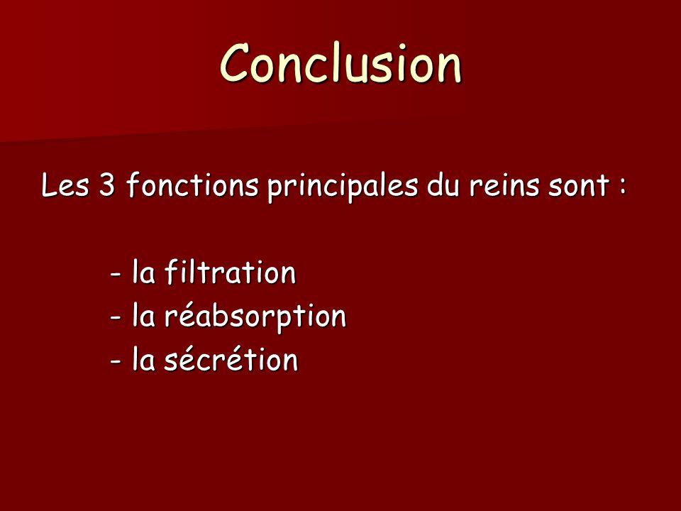 Conclusion Les 3 fonctions principales du reins sont : - la filtration