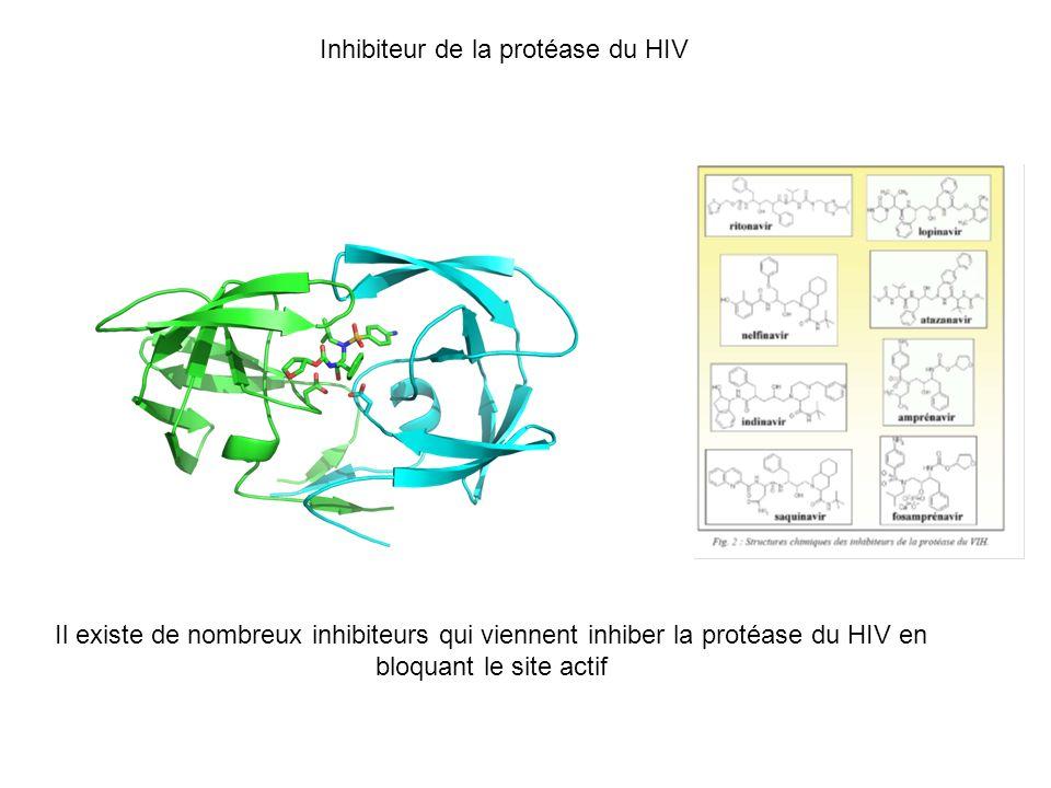 Inhibiteur de la protéase du HIV
