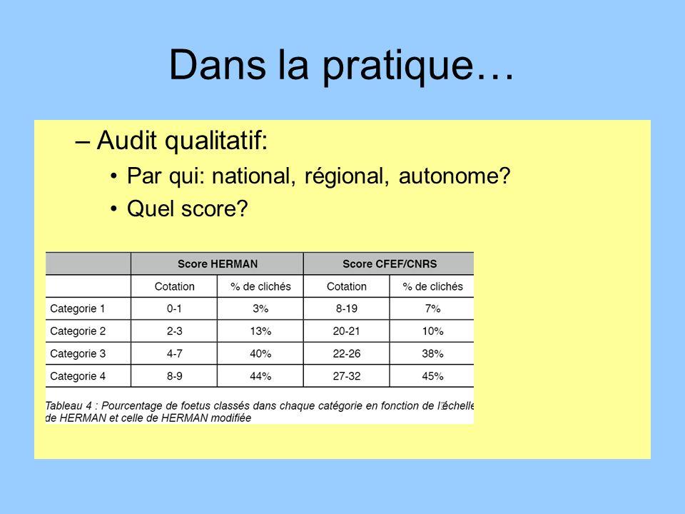 Dans la pratique… Audit qualitatif:
