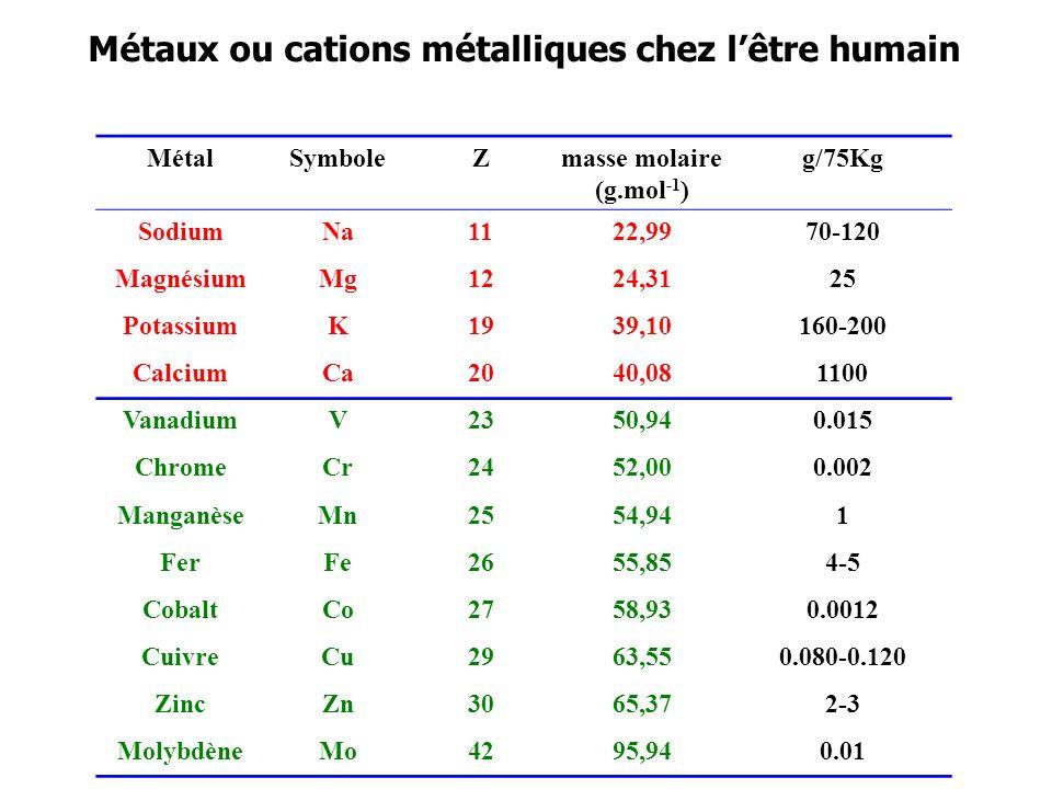 Métaux ou cations métalliques chez l'être humain