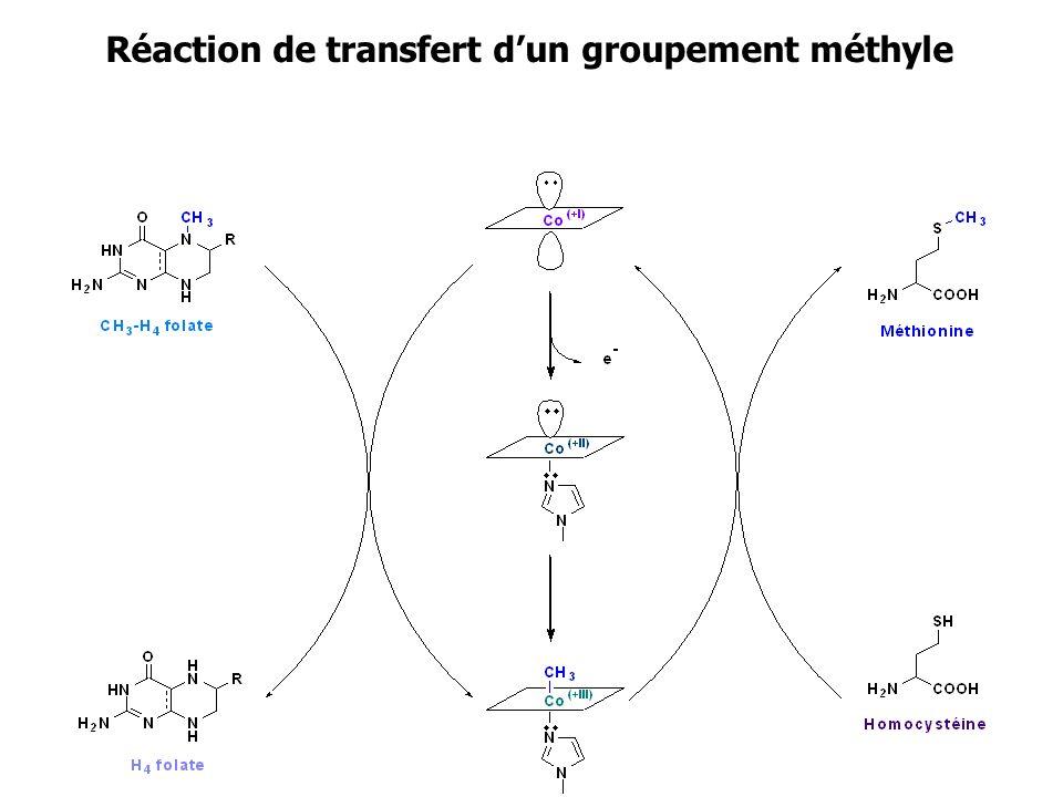 Réaction de transfert d'un groupement méthyle