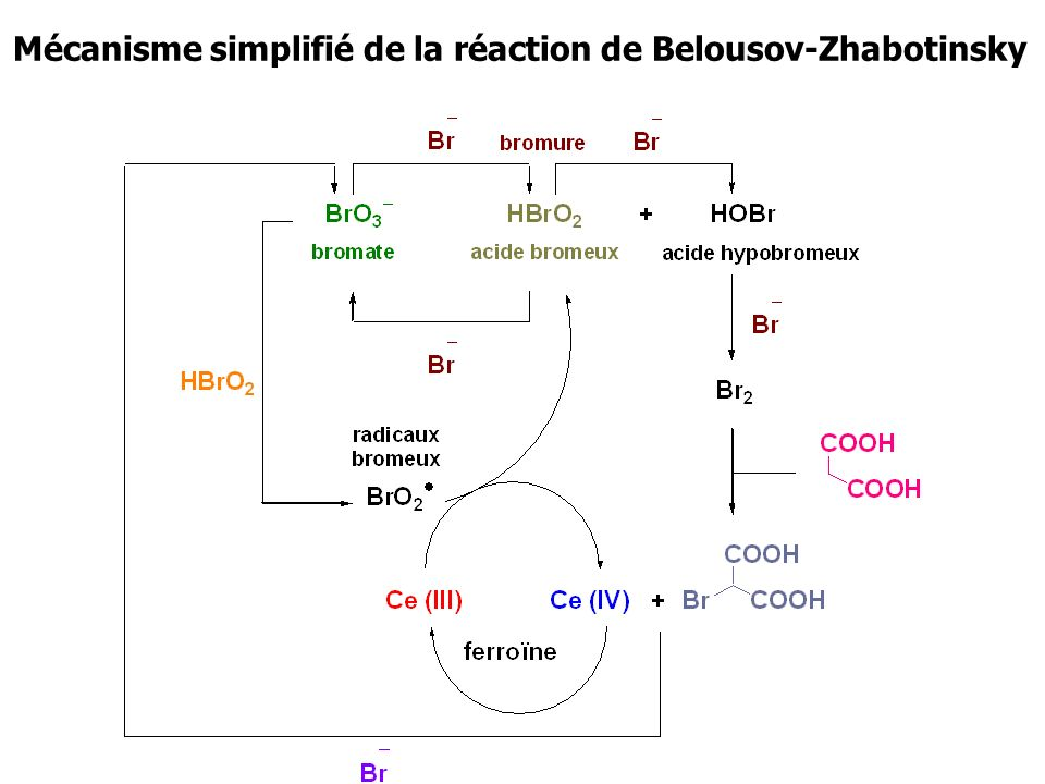 Mécanisme simplifié de la réaction de Belousov-Zhabotinsky