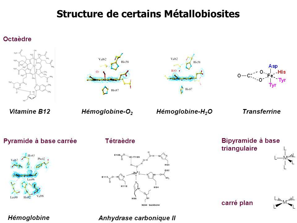 Structure de certains Métallobiosites