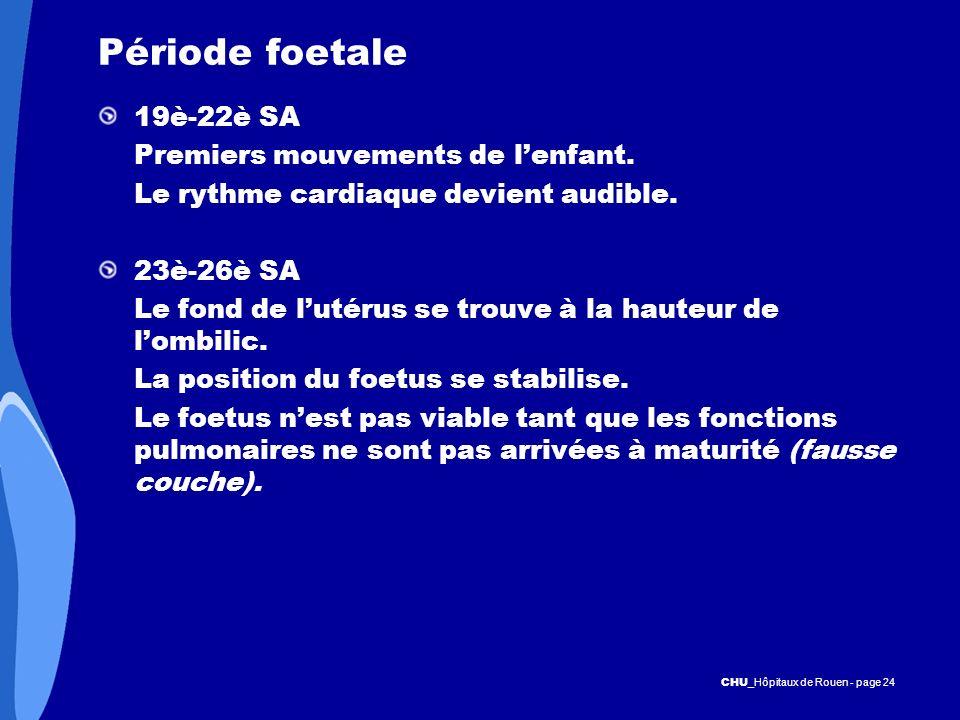 Période foetale 19è-22è SA Premiers mouvements de l'enfant.