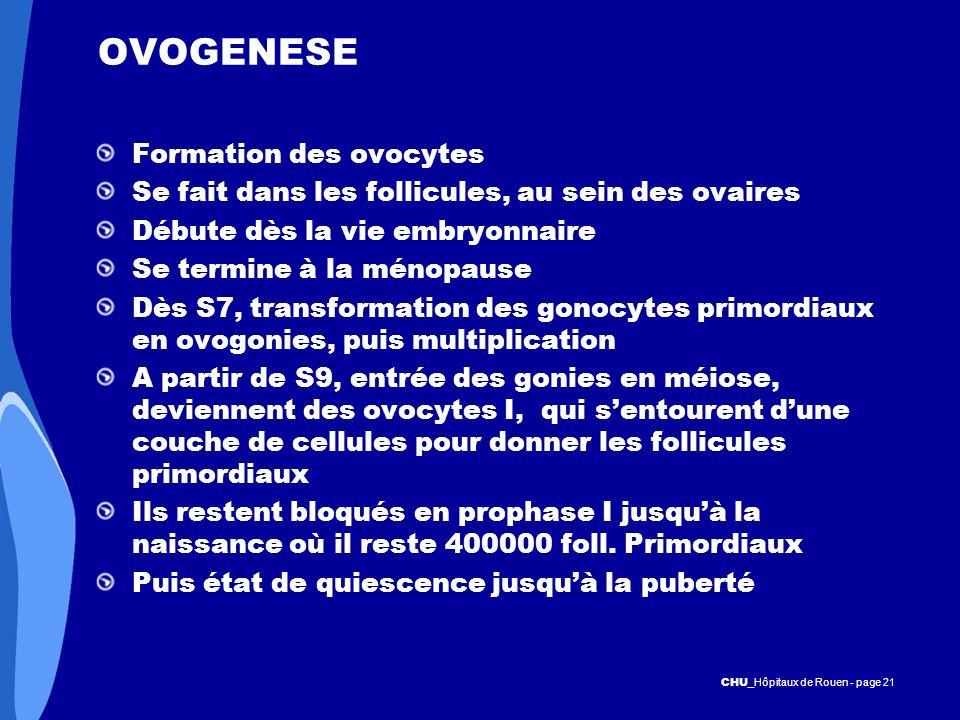 OVOGENESE Formation des ovocytes